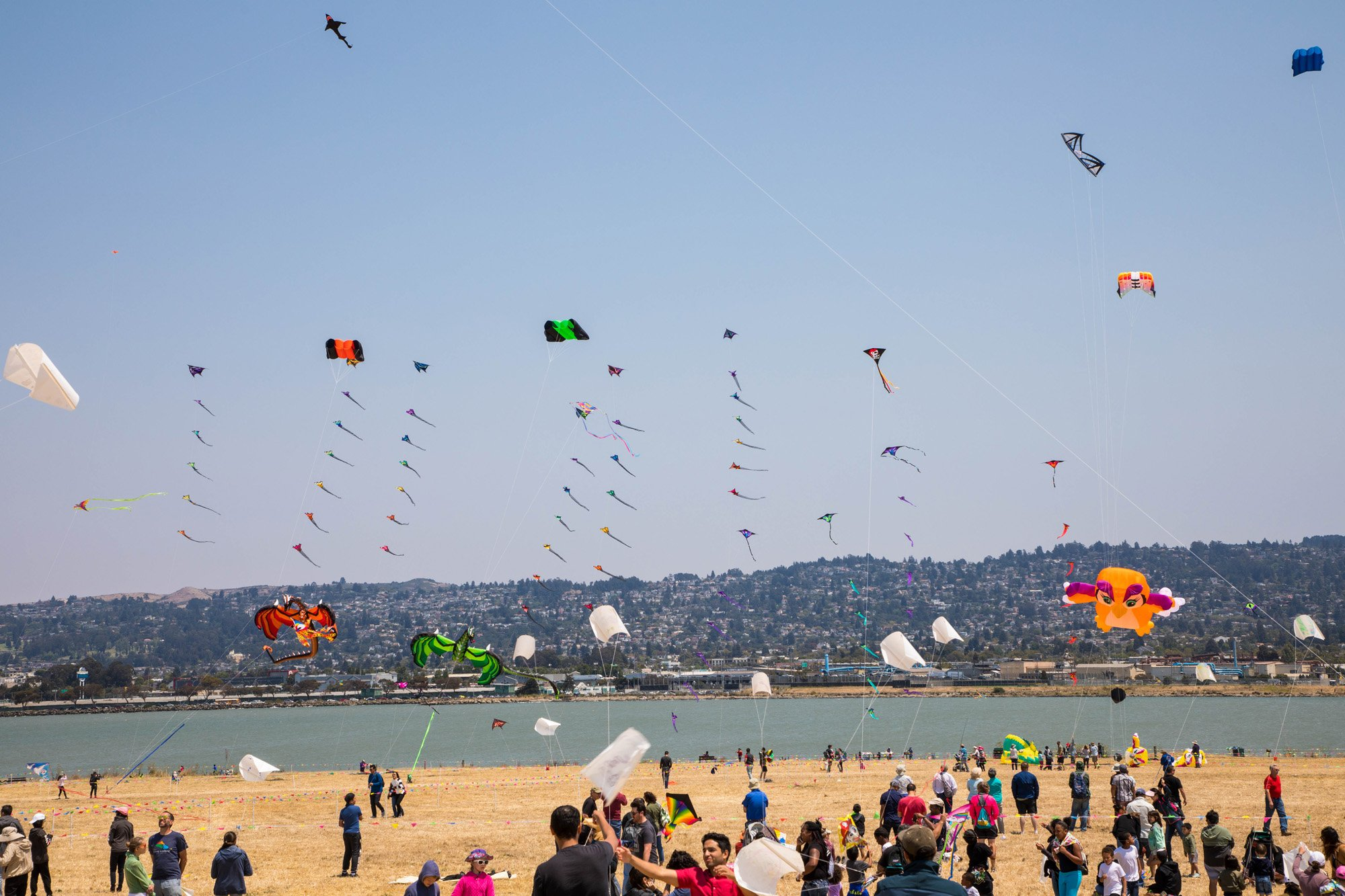 Berkeley Kite Festival - Fun for Kids of All Ages
