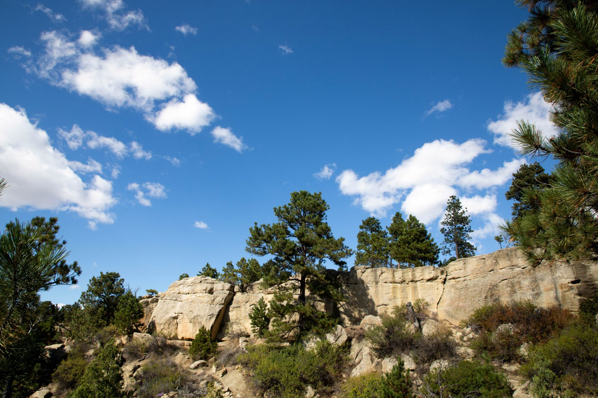 A view of the rimrocks is one of the must-see things to do in Billings Montana